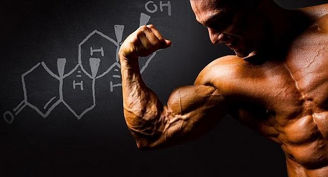 Как повысить уровень тестостерона? Советы ЗонаСпорта