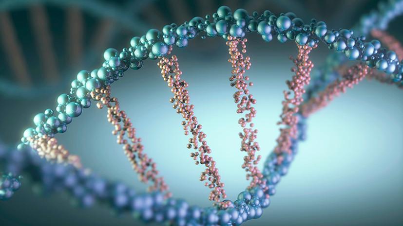 Узловой элемент: учёные обнаружили в клетках человека новую форму ДНК — РТ на русском